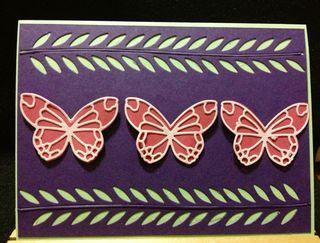 Butterflies 427