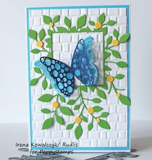Samirah Butterfly