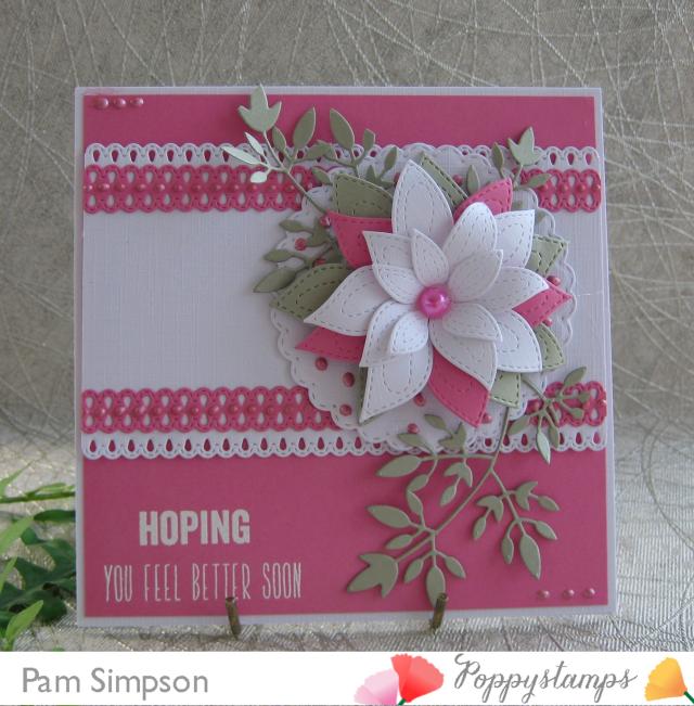 IMG_0308-crop