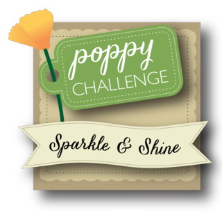 Challenge3 Sparkle and Shine copy
