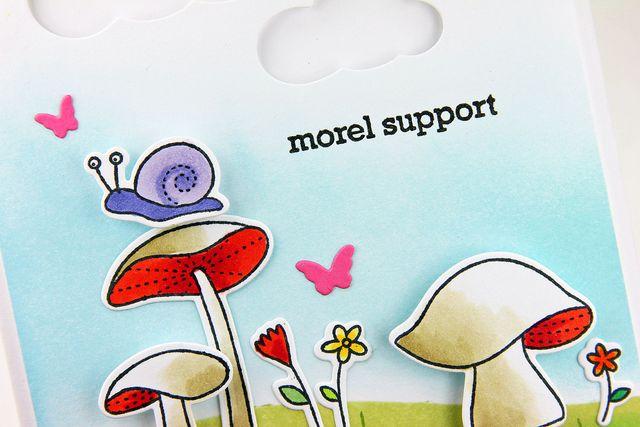 Morel-Support-Five