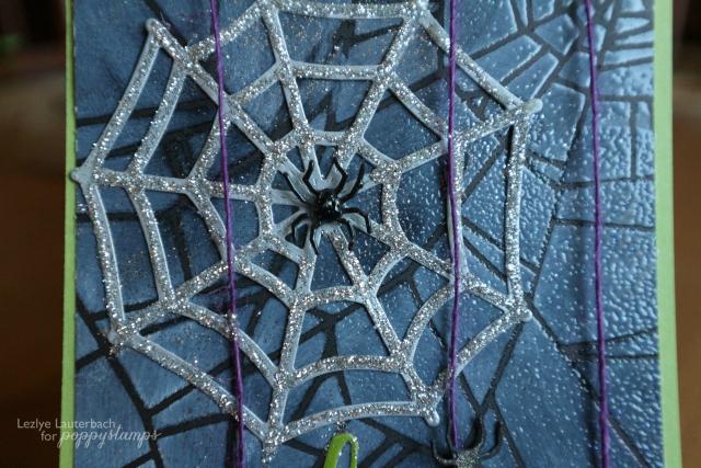 Spider5