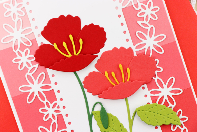 Floral-Dotted-Border-Five