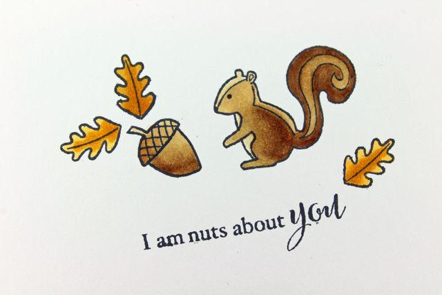 Squirrel-Acorn-CU