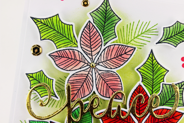 Peace Poinsettia Four LG