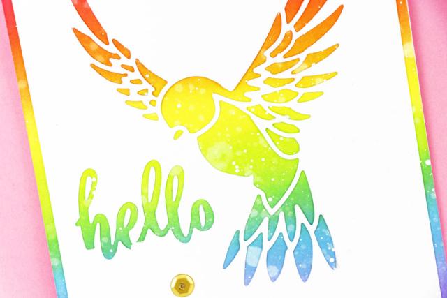 Rainbow-Bird-Collage-Two