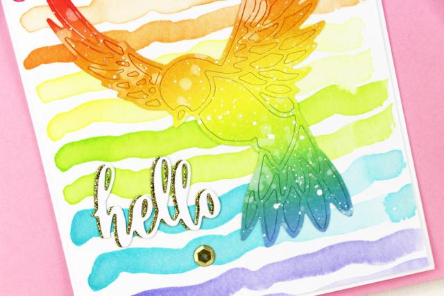 Rainbow-Stripe-Bird-Two